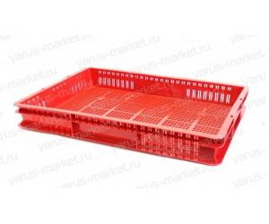 Пластиковый ящик, 600x400x75 мм., для хранения и переноса саженцев