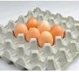 Бугорчатая прокладка для 30 куриных яиц картонная, 295×295 мм