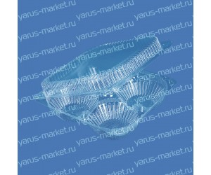 Пластиковая упаковка ИП-2 из ПЭТ/ОПС, 595×400×400мм