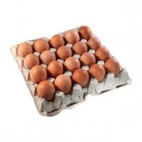 Бугорчатая прокладка для 20 куриных яиц, картонная, 255×210×40 мм