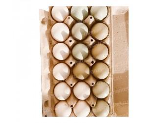 Картонная упаковка для яиц на 18 ячеек