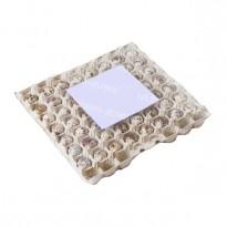 Бугорчатая прокладка для 56 перепелиных яиц, картонная, 310×310мм