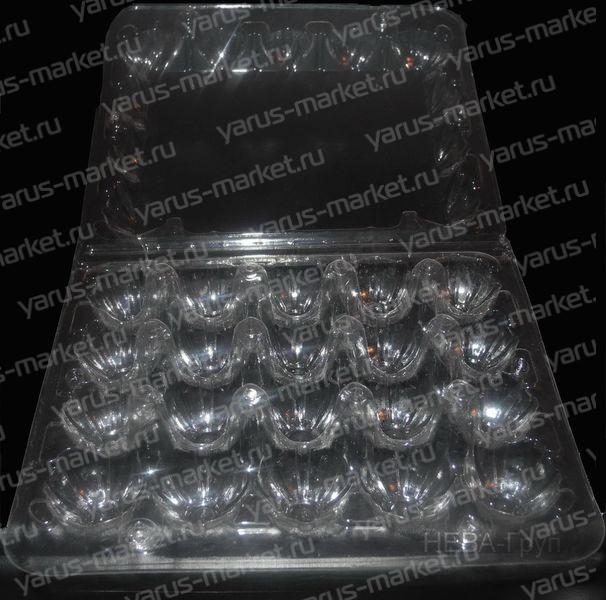 """Контейнер для 20 перепелиных яиц пластиковый. Купить контейнер пластиковый для перепелиных яиц оптом в магазине """"ЯрусМаркет"""""""