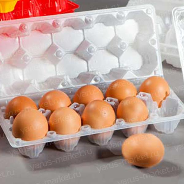 Контейнер для 10 куриных яиц, пластиковый
