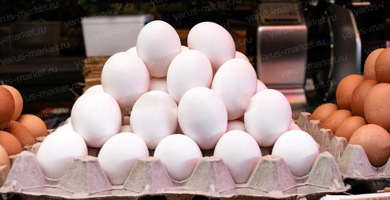 Ячейка под гусиное яйцо 306х300х58 мм